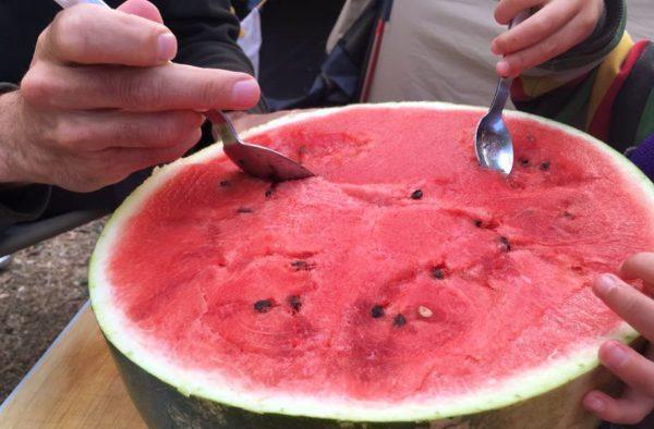 watermeloen-2